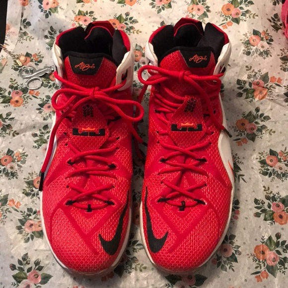 8adbbc4d315 Nike Varsity Red Lebron James XII Heart of Lion 13.  M 5b3bfeb5df0307d5da3551be